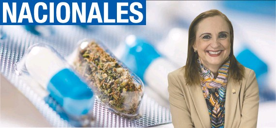 """?? """"Lamentablemente para algunos compañeros de partidos confesionales, el usar marihuana medicinal es pecado. Ese es el argumento"""", dijo Zoila Volio, diputada independiente. Cortesía/La República. ??"""