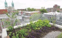 ?? JOHN KEN­NEY / MON­TREAL GAZETTE ?? Éti­enne Richer and Élise Boyer had a deck and green roof built on top of their Villeray cot­tage in 2013.
