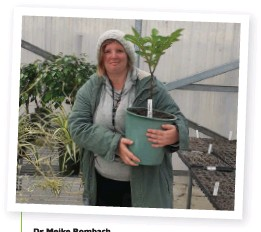 ??  ?? Dr Meike Rombach