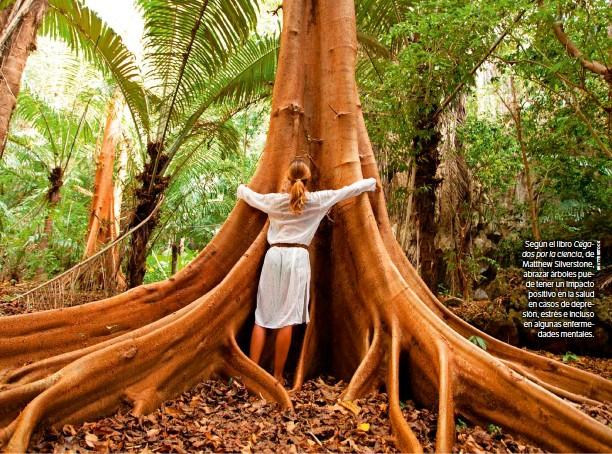 ??  ?? Según el libro Cegados por la ciencia, de Matthew Silverstone, abrazar árboles puede tener un impacto positivo en la salud en casos de depresión, estrés e incluso en algunas enfermedades mentales.