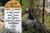 ??  ?? Découvrir la route du mimosa sur toute la région.
