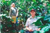 ??  ?? El 40 por ciento del total de beneficiarios son mujeres rurales. Contenido elaborado con apoyo de Colombia Sostenible