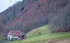 ??  ?? So zeigte sich der Hang oberhalb der Villa Sommerhaus im Frühjahr 2020.