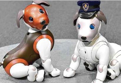 ?? AFP ?? Una ola de robots de compañía creció en pandemia. Aibo (foto), el perro robot de Sony (1999) y Pepper de Softbank (2015).ARCH.