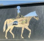 ?? Picture: Thembekile Vokwana ?? HORSE POWER The Nissan seen through a sign at the Cathkin Equestrian Centre.
