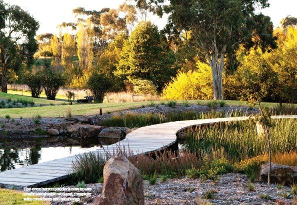 ??  ?? The once barren paddock now boasts a fully sustainable wetland, complete with creek beds and billabongs.