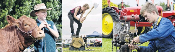 ?? PHOTOS: GERARD O'BRIEN ?? Leading role . . . Southland's Jake Eden, of Balfour, steadies a South Devon named Nora at the Taieri A&P showgrounds in Mosgiel on Saturday, while Alex Napier, of Tahakopa, competes during the Otago Axemen's Club timber sports demonstration and Otago Vintage Machinery Club member Max Martin, of Saddle Hill, makes sure a 1928 Anderson engine runs smoothly.