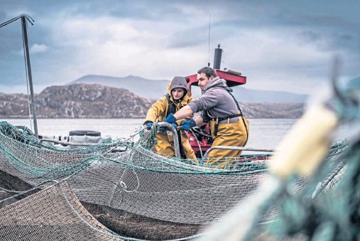 ??  ?? HAUL: Salmon farming is a key Scottish industry, and a collaborative research project hopes to find answers to the issue of gill disease