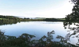 ??  ?? 'There is a stillness here': Ruan Creek at Ardevora on the Roseland Peninsula