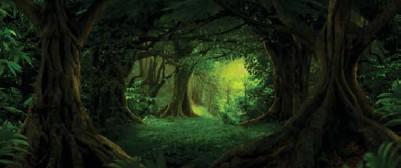 ?? FOTO: SHUTTERSTOCK/NTB ?? Støtte til regnskogbevaring og andre miljøtiltak i utlandet var på 4,8 milliarder kroner i fjor.