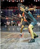 ??  ?? Paul Coll bowed out in the semifinal of the World Squash Championship in Chicago after losing 3-1 to Egypt's Mohamed Elshorbagy.