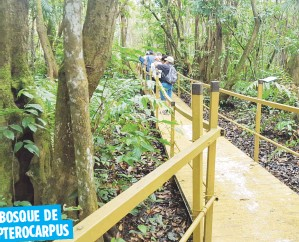 ?? Suministrada ?? Puedes encontrar este humedal en Palmas del Mar, en Humacao. Este es una servidumbre de conservación de Para la Naturaleza.
