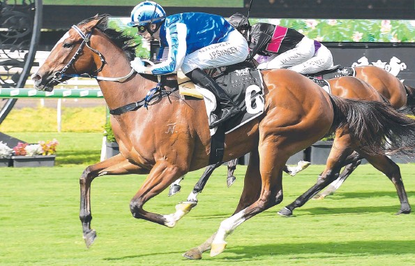??  ?? Unbeaten Rockhampton horse Sweet Dolly will line up for the Jewel Prelude on the Sunshine Coast this weekend. Picture: Trackside Photography