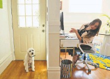 ?? Carlos Avila Gonzalez / The Chronicle ?? Rira Raisi checks her dog, Pablo, while working at home. Raisi hopes to return on a hybrid officeandhome work schedule.