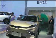 ?? ZHANG DANDAN / CHINA DAILY ?? Chinese new energy vehicle startup WM Motor displays an SUV at the 2020 Beijing auto show.