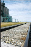 ?? File photo ?? CN Rail has been do­ing well with its grain ship­ments.