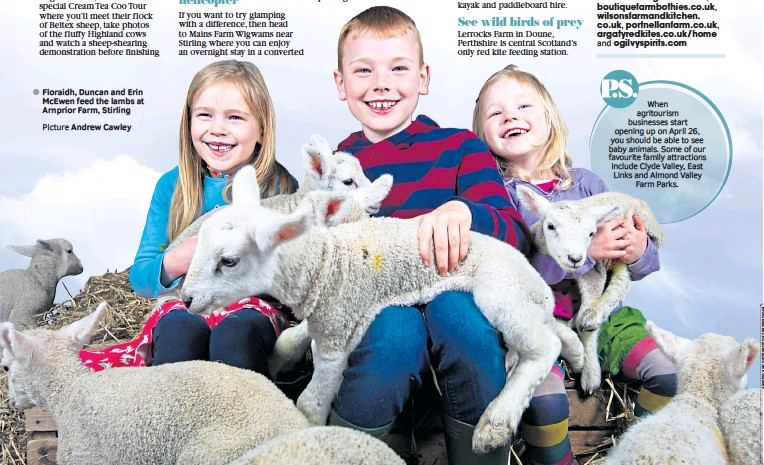 ?? Picture Andrew Cawley ?? ● Floraidh, Duncan and Erin Mcewen feed the lambs at Arnprior Farm, Stirling