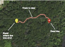 ??  ?? Stand where doe was shot