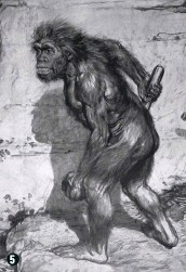 """??  ?? 5 Franz Kupka's """"Old Man"""" (1909) portrays a stooped, Gorilla-like creature. 6 By the time Ludwig Wilser described Neanderthals as having brown skin and tightly curled hair (shown in this 1910 image), many depictions were reflecting racist stereotypes"""