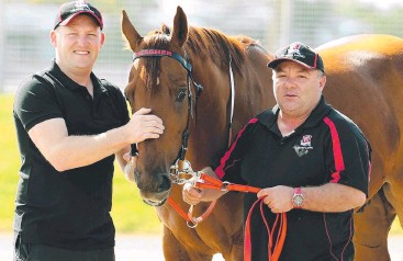 ??  ?? CHESTNUT CHANCE: Dan and Chris Meagher with Harada Bay. Picture: Mark Calleja