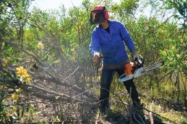 ?? | Supplied ?? ALIEN vegetation clearance.