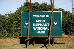 ??  ?? The Eastern Cape of South Africa is home to Addo Elephant National Park, where more than 600 elephants live on protected land.