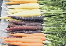 ??  ?? A man was convicted of common assault after a row about carrots.