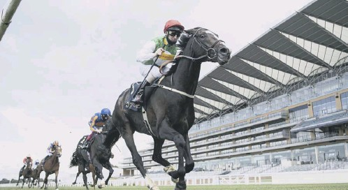 ?? PICTURE: EDWARD WHITTAKER/GETTY IMAGES ?? 0 Pyledriver forges clear of his rivals to win the King Edward VII Stakes at Royal Ascot in June.