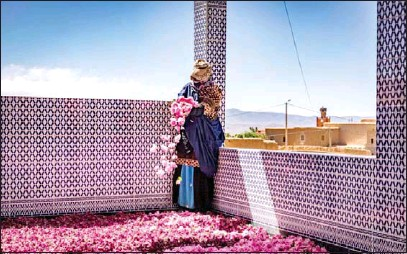 ?? AFP ?? A worker spreads rose petals outside a house in the city of Kelaat Mgouna (or Tighremt NImgunen) in Morocco's central Tinghir Province in the Atlas Mountains on April 26.