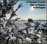 ??  ?? A Thorigné-Fouillar (Ille-et-Vilaine), en Bretagne.