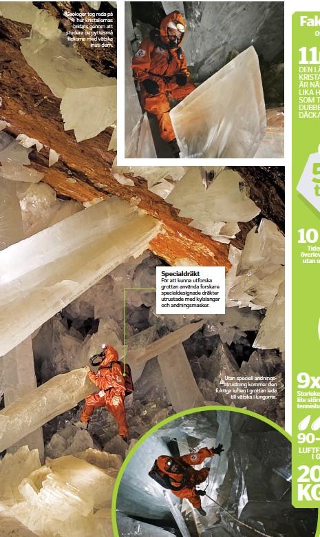 ??  ?? Geologer tog reda på hur kristallernas bildats genom att studera de pyttesmå fickorna med vätska inuti dem. Utan speciell andningsutrustning kommer den fuktiga luften i grottan leda till vätska i lungorna.