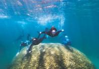 "?? WOODY SPARK ?? Students and Reef Ecologic staff members swim over a massive Porites coral nicknamed ""Muga dhambi"" (big coral)."