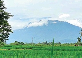 ?? KRIDA HERBAYU/JAWA POS RADAR BANYUWANGI ?? MULAI TENANG: Gunung Raung terlihat jelas dan tidak ada semburan asap dari puncak kawah kemarin (22/2).