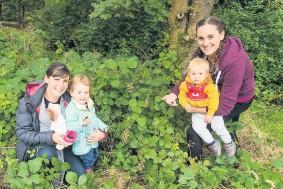 ??  ?? Green fingers some berries. Mhairi Mair, Matilda Mair, Eilish Wilson and Elijah Wilson dig out