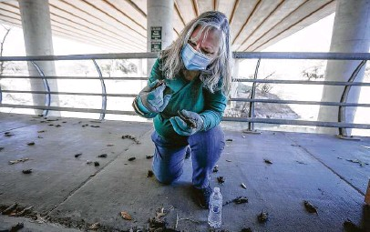 ?? Photos by Steve Gonzales / Staff photograph­er ?? Diana Foss, a Texas Parks and Wildlife biologist, looks for surviving Mexican free-tailed bats under the Waugh Bridge.