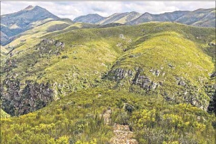 ?? Photo: Matthew de Lange ?? The Groendal Nature Reserve, close to the Baviaanskloof world heritage site in the Eastern Cape, is home to the martial eagle, black harrier and Verreaux's eagle, which are all at risk of extinction.