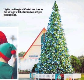 ??  ?? Lights on the giant Christmas tree in the village will be turned on at 9pm next Friday.