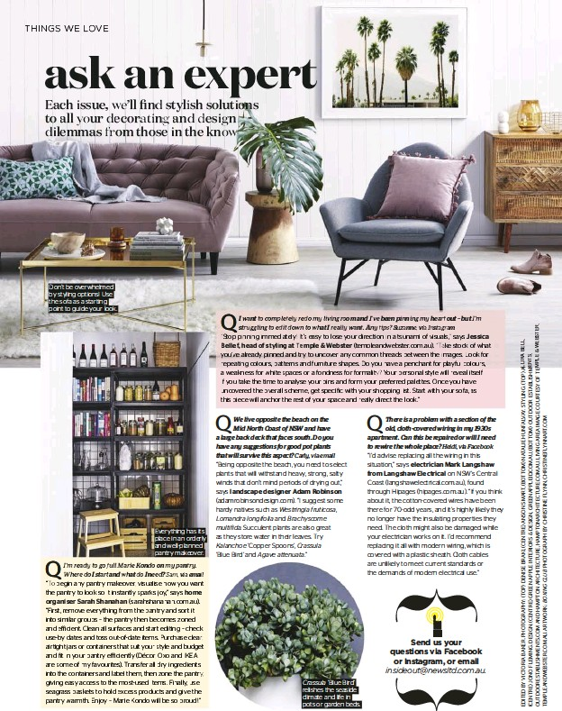 ??  ?? Don't be overwhelmed by styling options! Use the sofa as a starting point to guide your look. Everything has its place in an orderly and well-planned pantry makeover. 'Blue Bird' relishes the seaside climate and life in pots or garden beds.