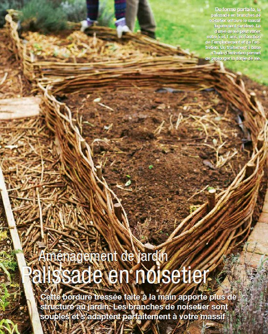 PressReader - Jardin Facile: 2018-02-24 - Une bordure de noisetier