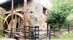 ??  ?? Bradshaw's Mill in Bathurst.