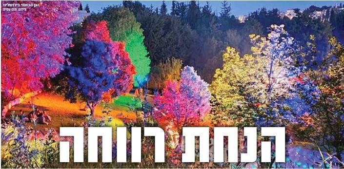?? צילום: תום עמית ?? הגן הבוטני בירושלים