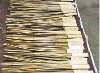 ??  ?? RINGKAS: Rotan atau Zai Mai yang digunakan dalam teknik perubatan Qigong.