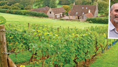 ??  ?? Growing business: A smallholding with vines. Inset: Tim and Bev Haywood of Astley Vineyard