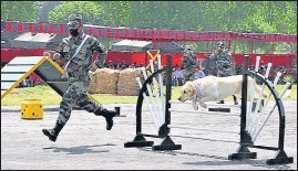 ?? HT PHOTO ?? A jawan carrying out an exercise with a canine in Rajouri on Tuesday. White Knight Corps paid tributes to martyrs on Rajouri Day.