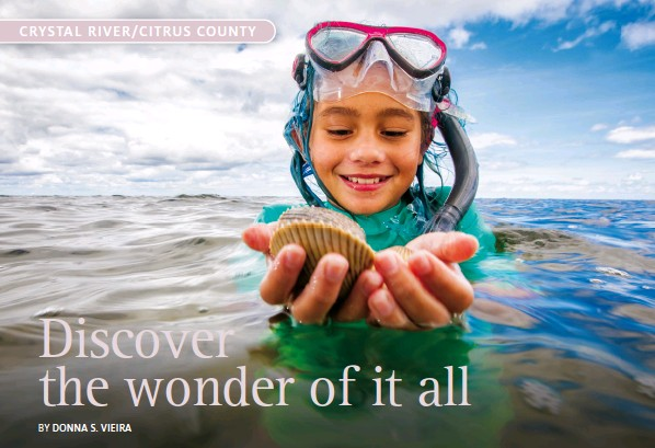 ??  ?? SCALLOPING • DISCOVER CRYSTAL RIVER
