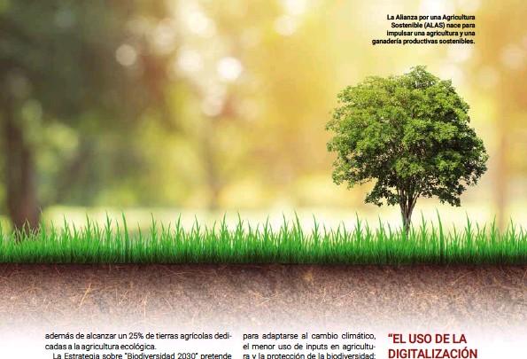??  ?? La Alianza por una Agricultura Sostenible (ALAS) nace para impulsar una agricultura y una ganadería productivas sostenibles.