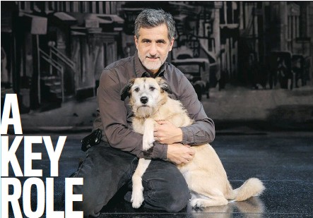 ?? PHOTOS: JOAN MARCUS ?? William Berloni trained his first dog for Annie more than 40 years ago. Since then, he has trained about 200 dogs for the stage.