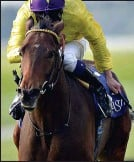 ??  ?? RULED OUT: My Titania will not run at the Curragh this afternoon