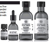 ??  ?? The Body Shop's Tea Tree range, which is perfect for oily and blemishprone skin, is made with purifying Community Fair Trade tea tree oil from Kenya.