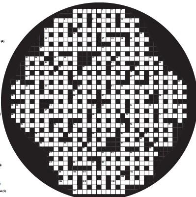 Single mindedness crossword